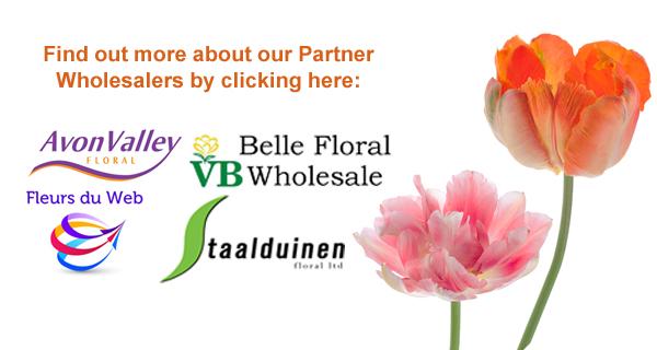 Partner Wholesalers