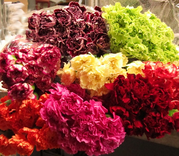 97b3b20883cc Assorted Novelties - Standard Carnation - Carnations - Flowers by ...